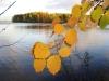 Озеро Сандал. Осень