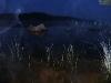 thumbs ozero suistamo 20 Озеро Суйстамонъярви