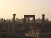 thumbs palmira 14 Пальмира