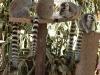 thumbs park obezjan 32 Парк Обезьян (Monkey Park)