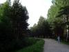 thumbs park sosnovka 20 Парк Сосновка