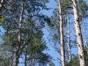 thumbs pechenezhskoe vodohranilishhe 03 Печенежское водохранилище