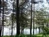 Перынский скит. Вид на озеро Ильмень