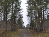 Дорога к реке Келокоски