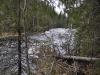 thumbs porogi na reke yanisjoki 02 Пороги на реке Янисйоки