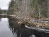 thumbs porogi na reke yanisjoki 08 Пороги на реке Янисйоки