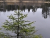 thumbs porogi na reke yanisjoki 09 Пороги на реке Янисйоки