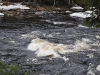 thumbs porogi na reke yanisjoki 13 Пороги на реке Янисйоки