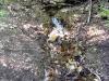 thumbs radonovye ozera 05 Радоновые озера