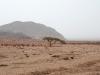 Национальный парк Рас Мохаммед