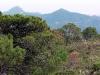 thumbs serrania de ronda 11 Горный хребет Ронда (Serrania de Ronda)