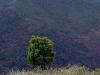 thumbs serrania de ronda 13 Горный хребет Ронда (Serrania de Ronda)
