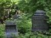 thumbs smolenskoe lyuteranskoe kladbisshe 19 Смоленское лютеранское кладбище