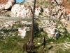 thumbs spaso kamennyj monastyr 06 Спасо Каменный монастырь