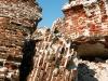 Спасо-Каменный монастырь. Руины