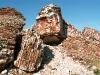 thumbs spaso kamennyj monastyr 09 Спасо Каменный монастырь