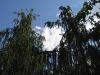 Умань. Софиевский парк