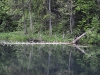 Усадьба Лопухина. Радоновые озера