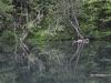 Усадьба Лопухина. Иллюзия на радоновых озерах