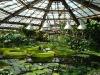 thumbs vodnyj marshrut 17 Ботанический сад имени В.Л. Комарова