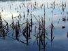 thumbs vodohranilishe na reke suma 05 Водохранилище на реке Сума