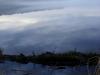 Водохранилище на реке Сума. Коряга