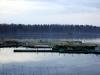 Водохранилище на реке Сума. Рыбное хозяйство