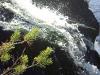 Водопад Кивач боковой приток