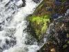 thumbs vodopad kivach 14 Водопад Кивач