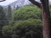 Воронцовский дворец. Вид на горы